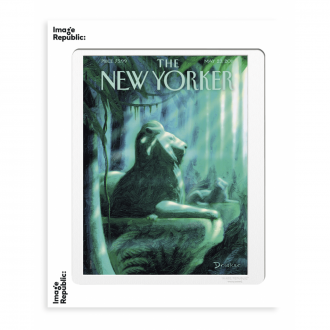 Affiche The Newyorker drooker the library 56x76cm