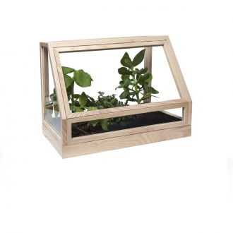 Greenhouse Wooden Terrarium